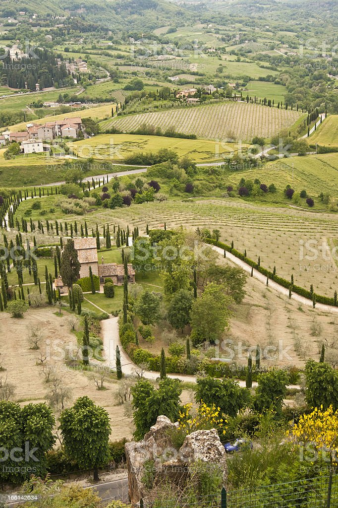 Road with cipress trees and hills in Tuscany royalty-free stock photo