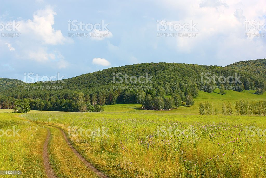 Roads to the mountains royalty-free stock photo