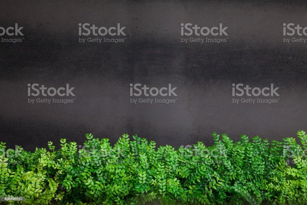 Roadside green bushes stock photo