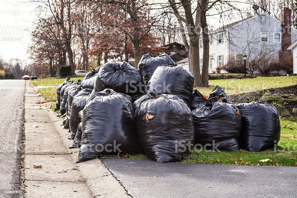 Roadside Plastic Waste Bags Filled With Autumn Leaves stock photo