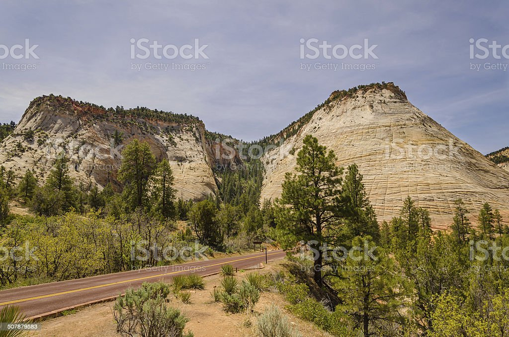 Roadway leading through Zion National Park stock photo