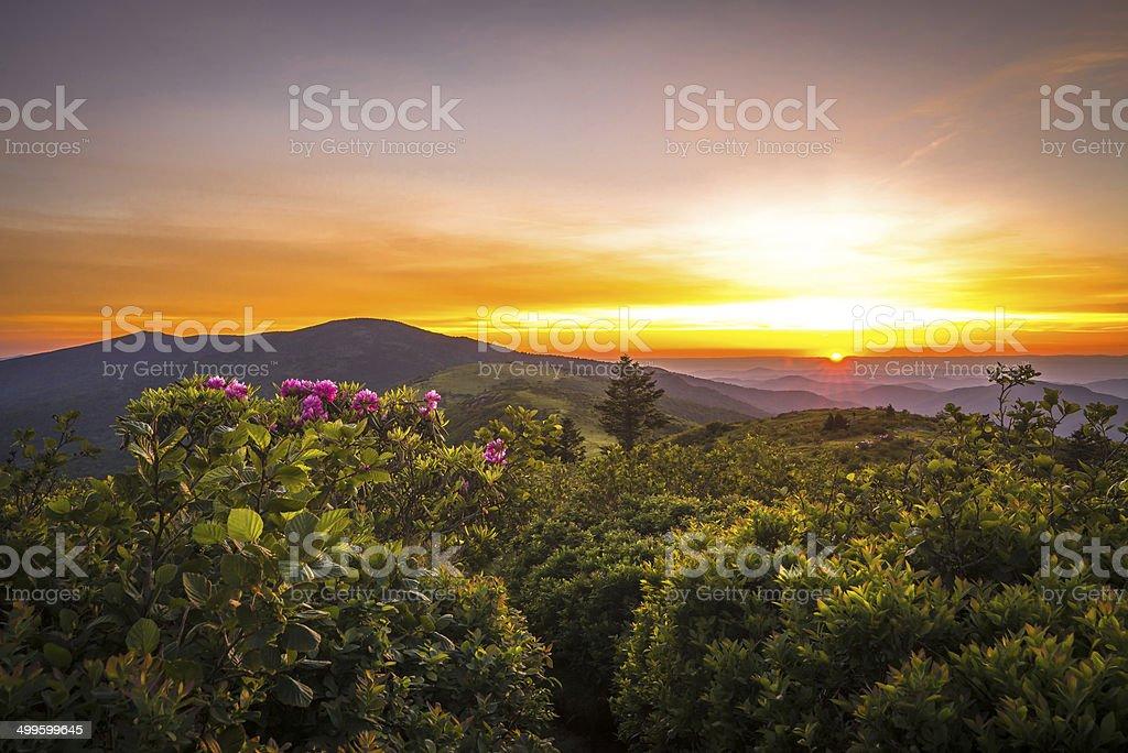 Roan Mountain Sunset stock photo