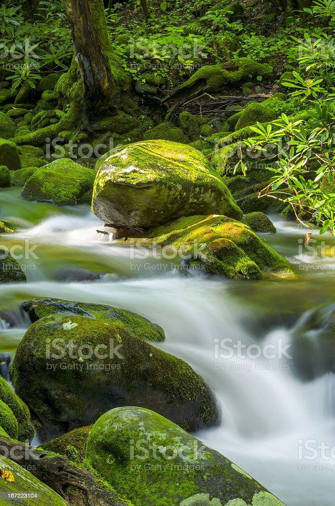 Roaring Fork Creek stock photo