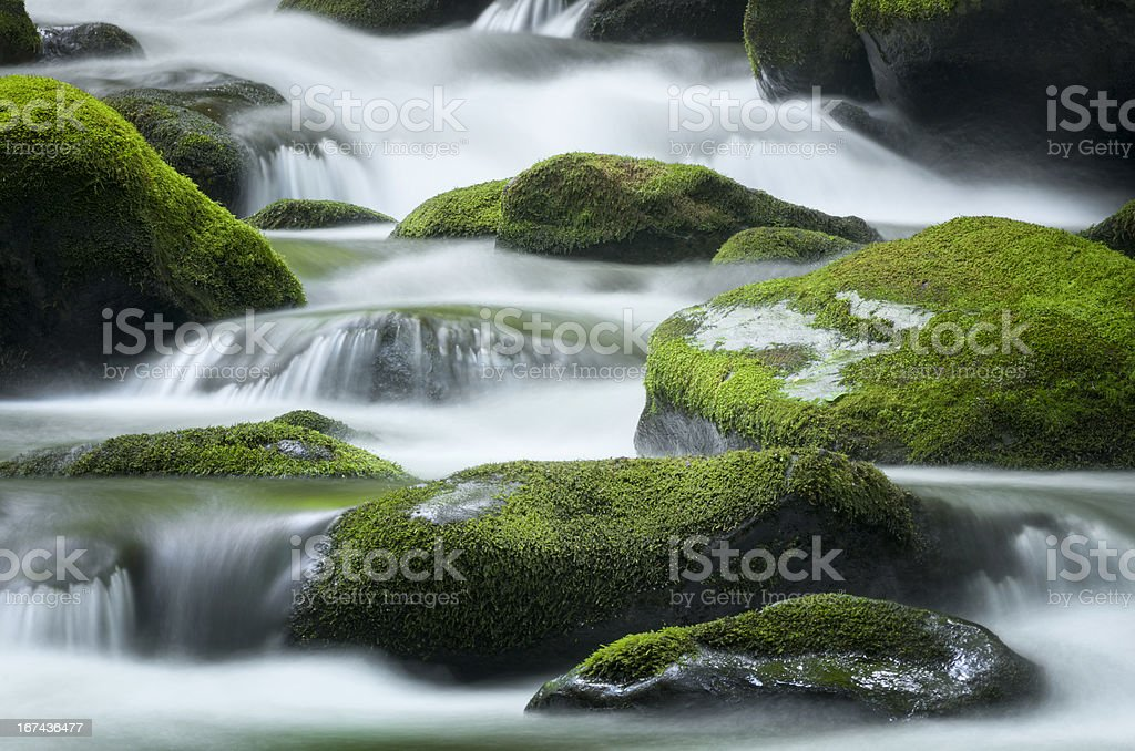Roaring Fork Creek, Smoky Mountains National Park royalty-free stock photo
