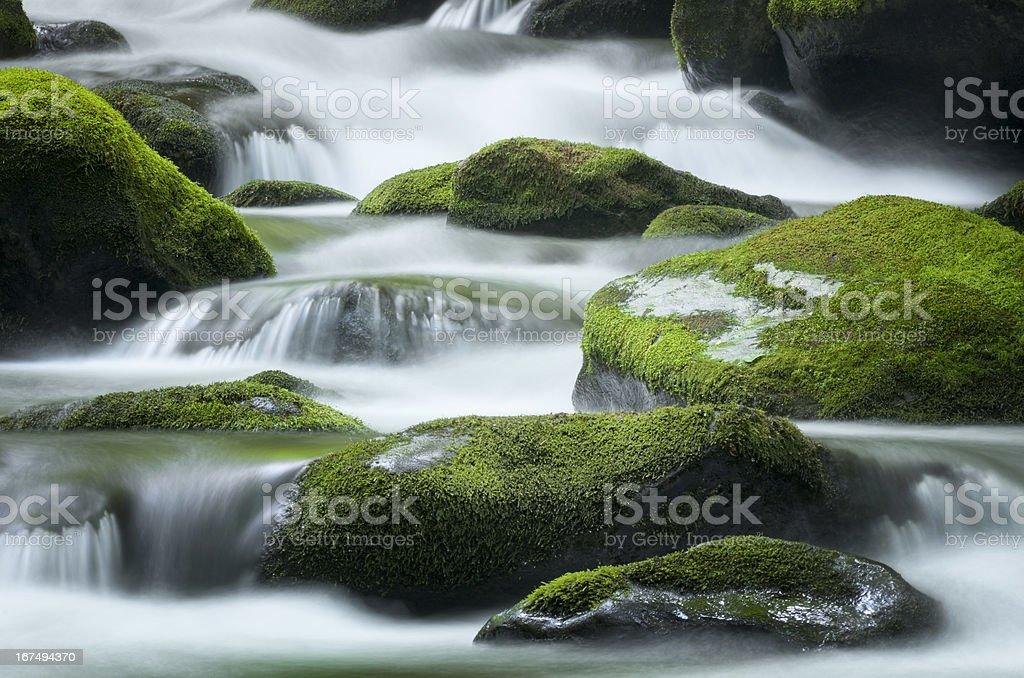 Roaring Fork Creek, Smoky Mountains National Park royalty-free stock photo