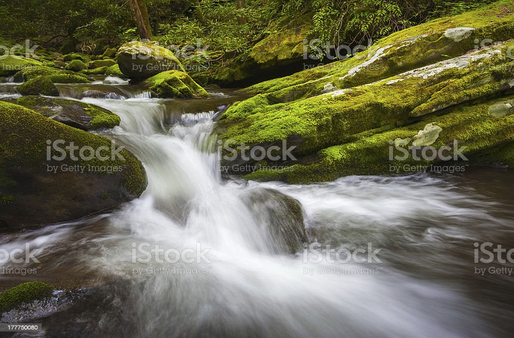 Roaring Fork Great Smoky Mountains National Park Cascade Gatlinburg TN royalty-free stock photo