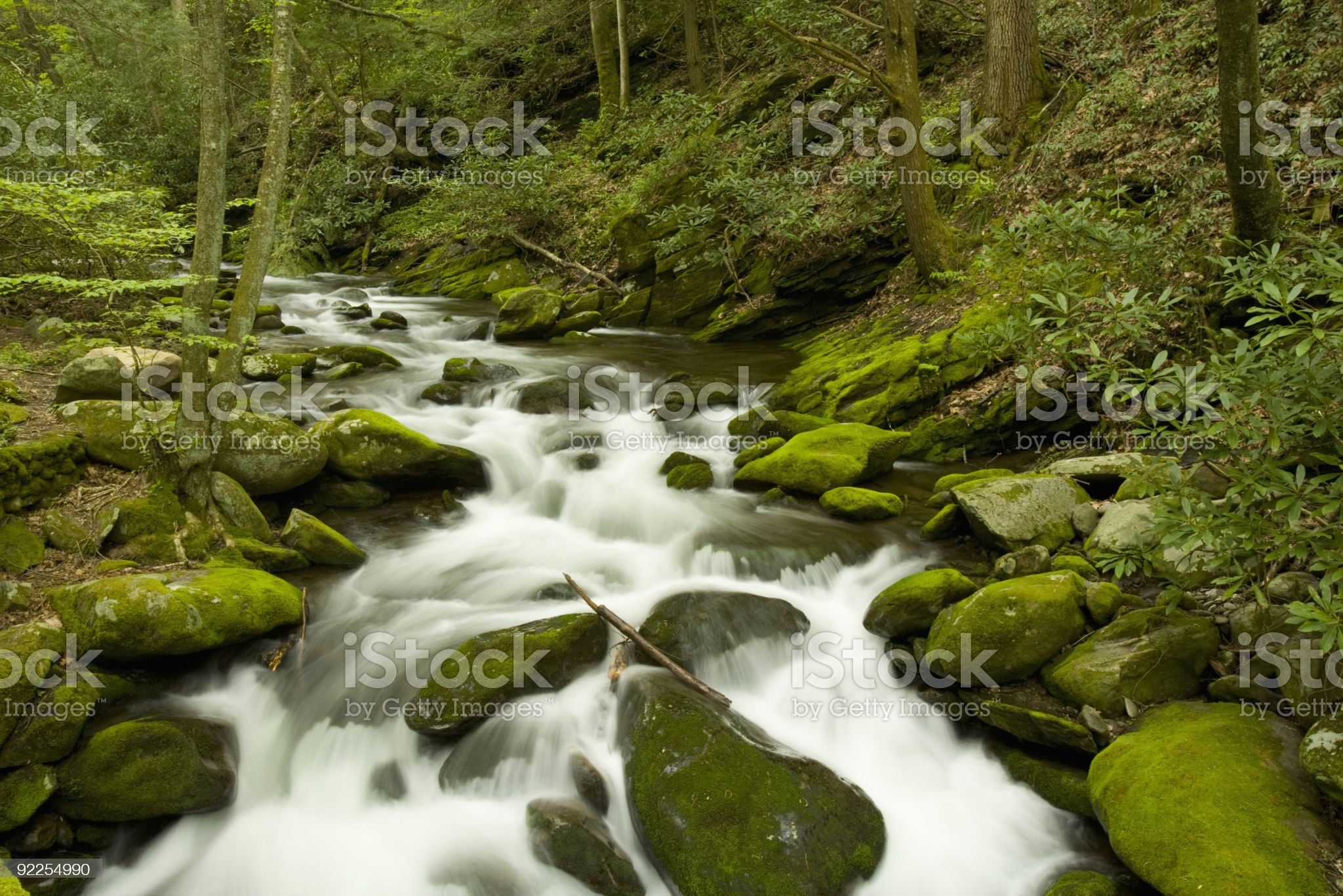 Roaring Fork, Great Smoky Mountains royalty-free stock photo