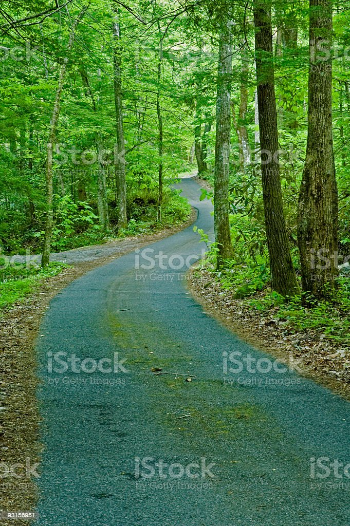 Roaring Fork Motor Nature Trail, Great Smoky Mtns NP royalty-free stock photo