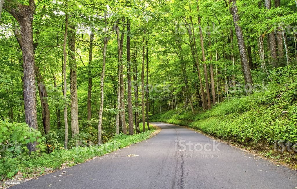 Roaring Fork Motor Nature Trail In The Great Smoky Mountains stock photo