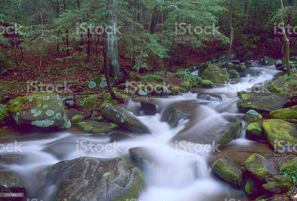 Roaring Fork royalty-free stock photo