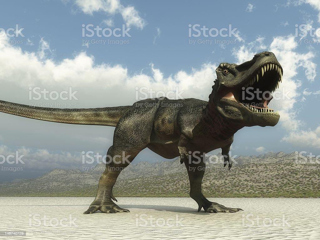Roaring Tyrannosaur stock photo