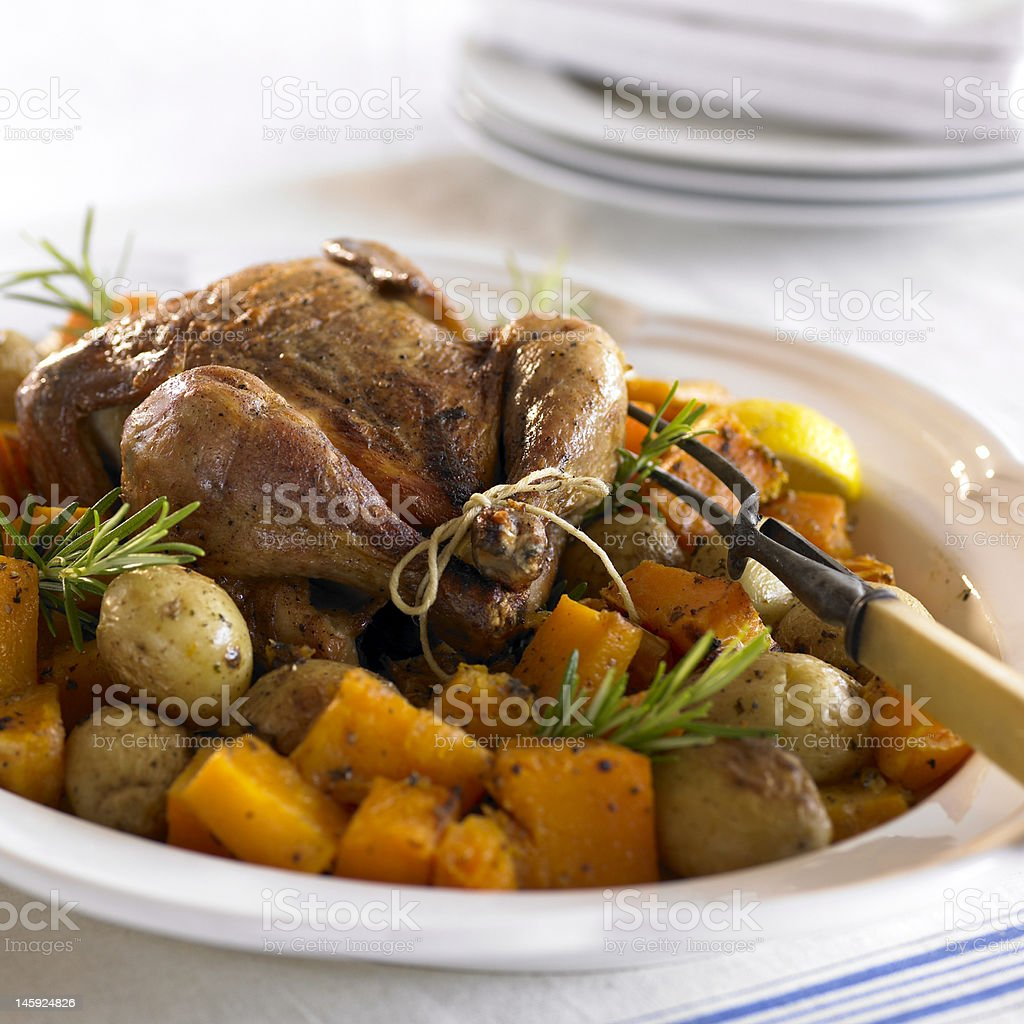 Roast Chicken & Veggies stock photo