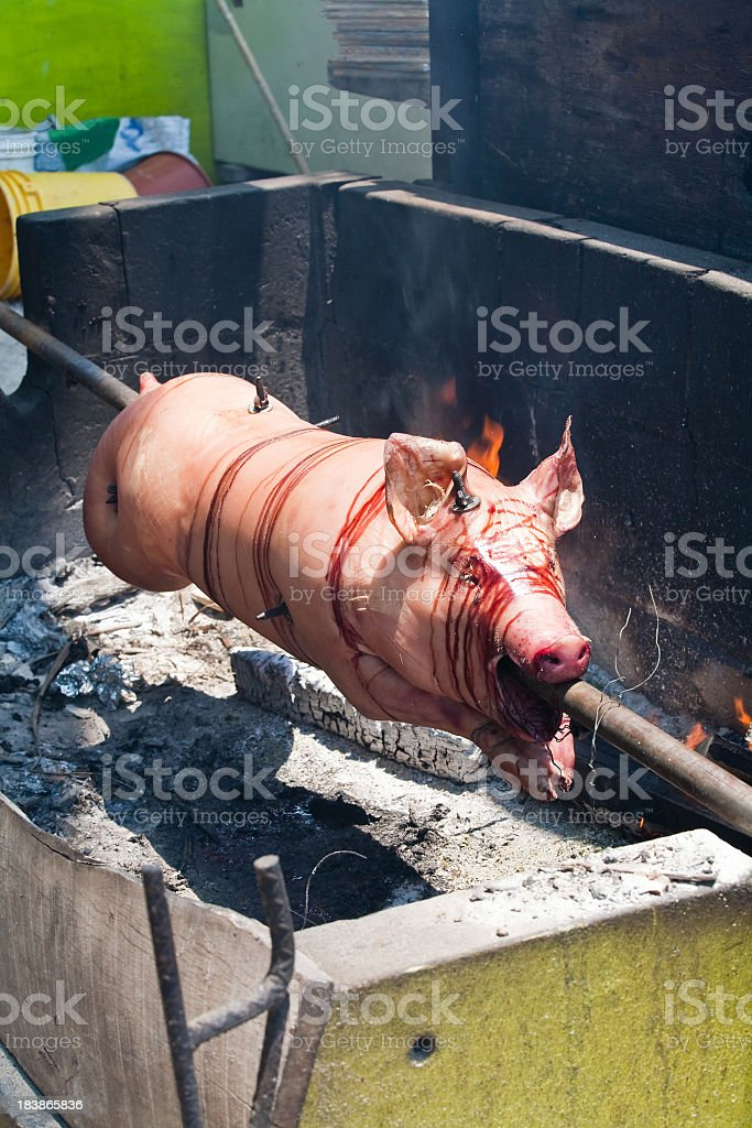 Roast Pig royalty-free stock photo