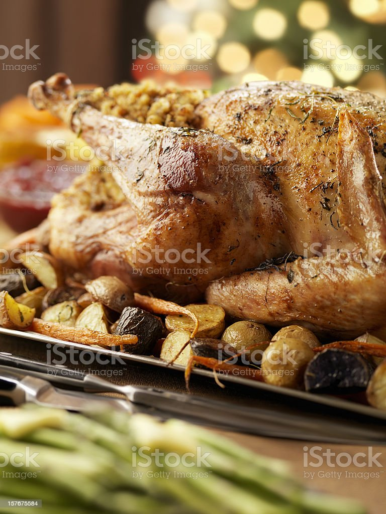 Roast Turkey Dinner at Christmas Time royalty-free stock photo