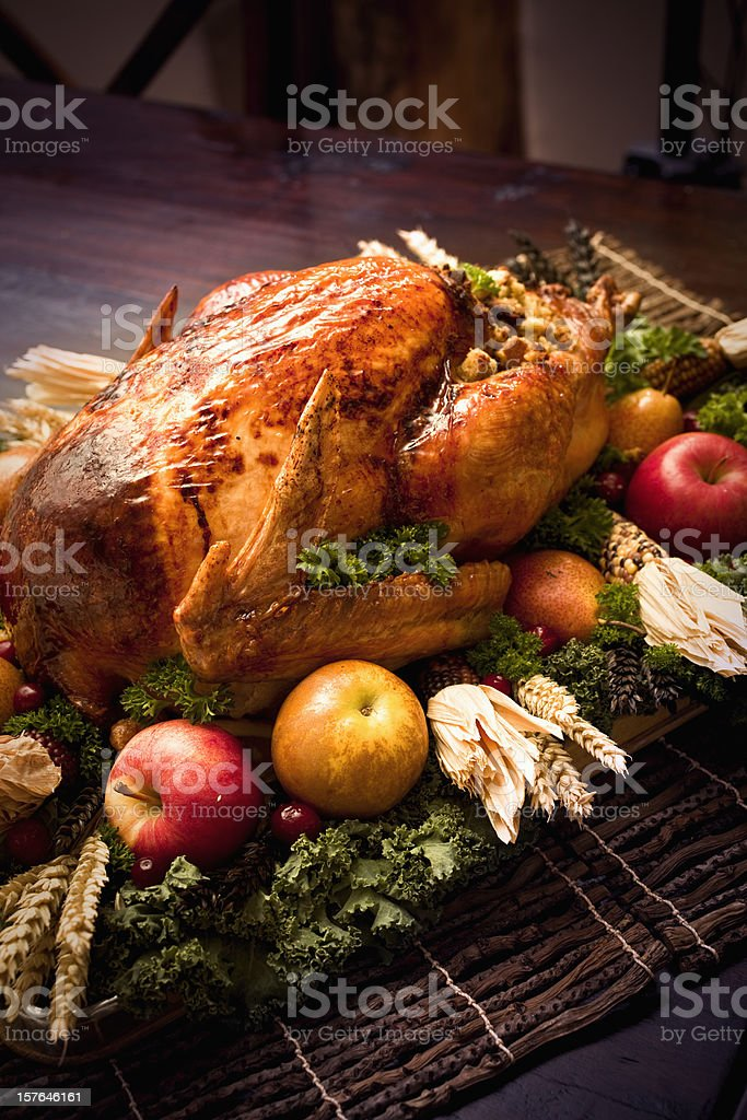 Roast Turkey stock photo