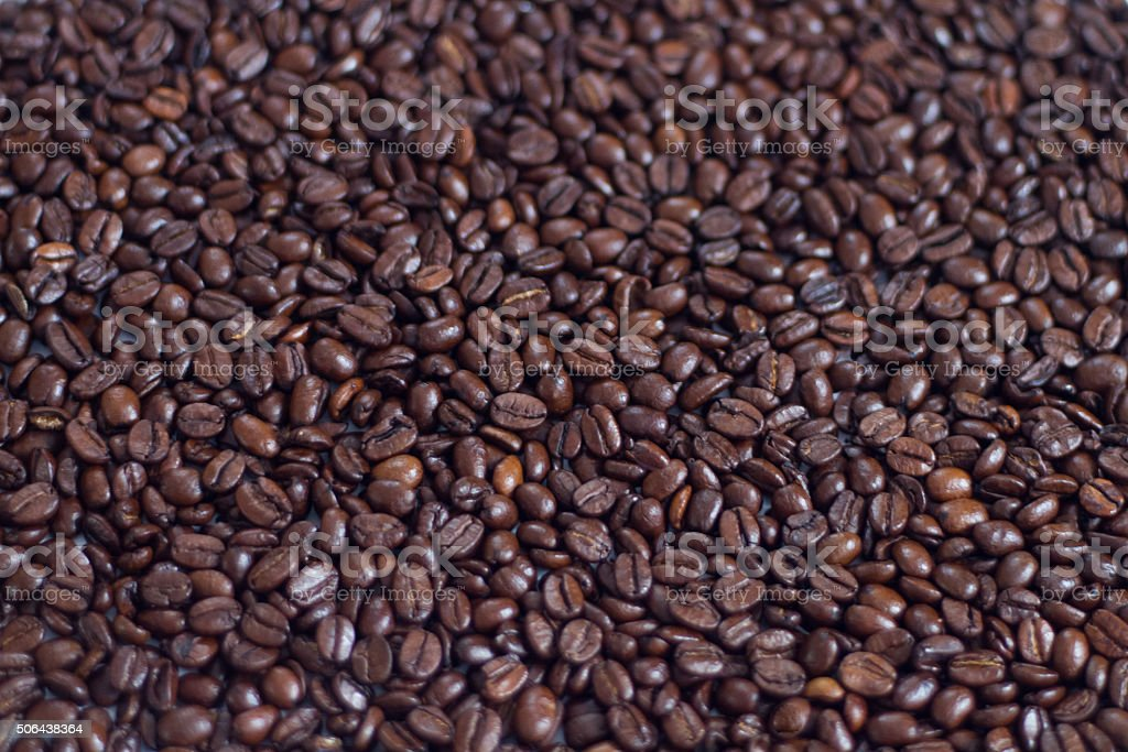 roasted arabica coffee stock photo
