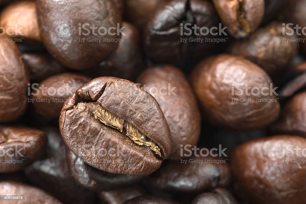Roasted brown coffee beans stock photo