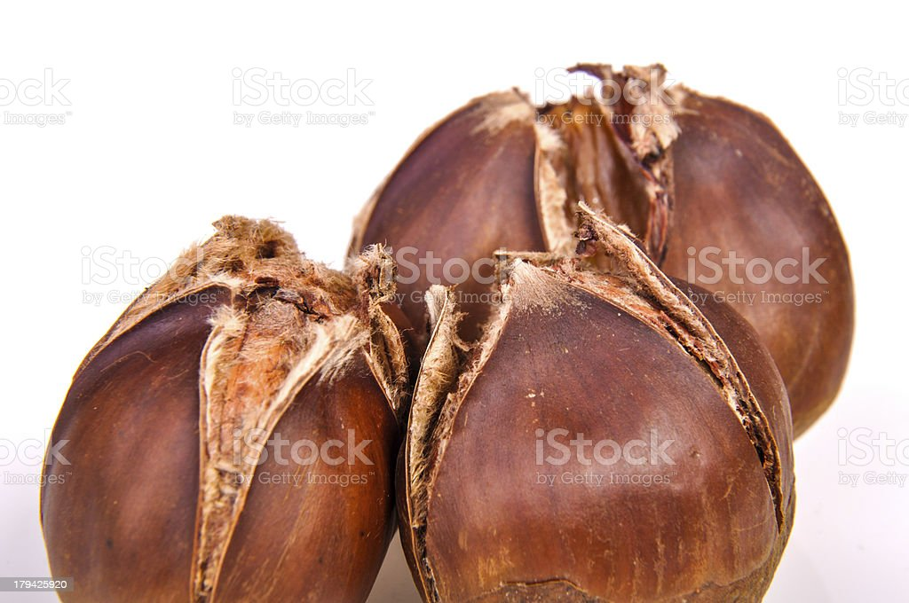 Roasted chestnut royalty-free stock photo
