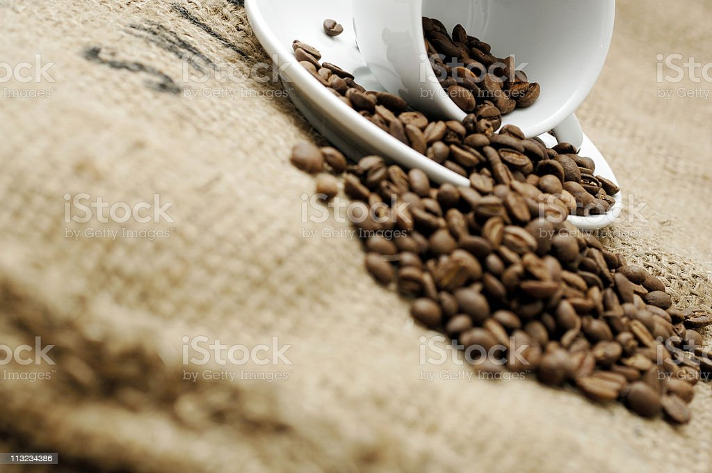 Roasted coffee beans and cup against a Hessian cloth sack royalty-free stock photo