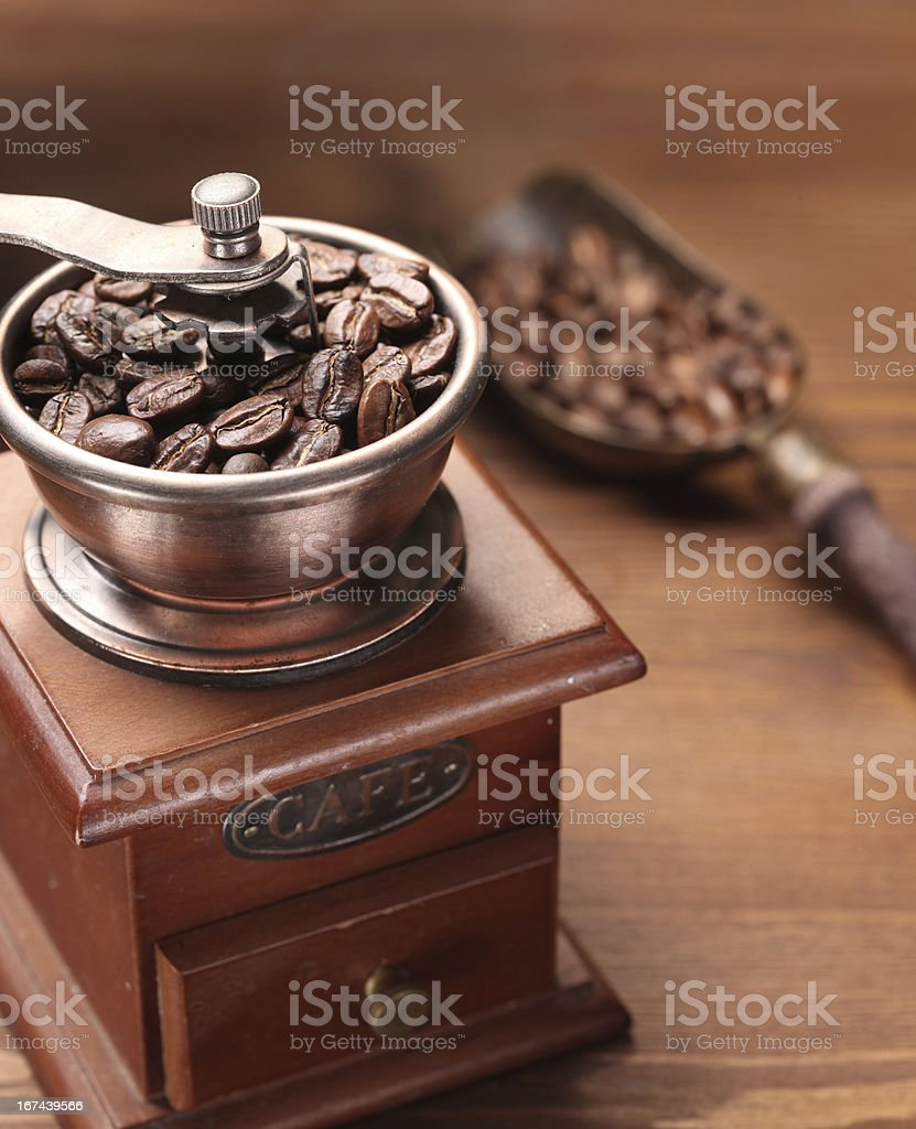 Roasted coffee beans in a grinder. royalty-free stock photo