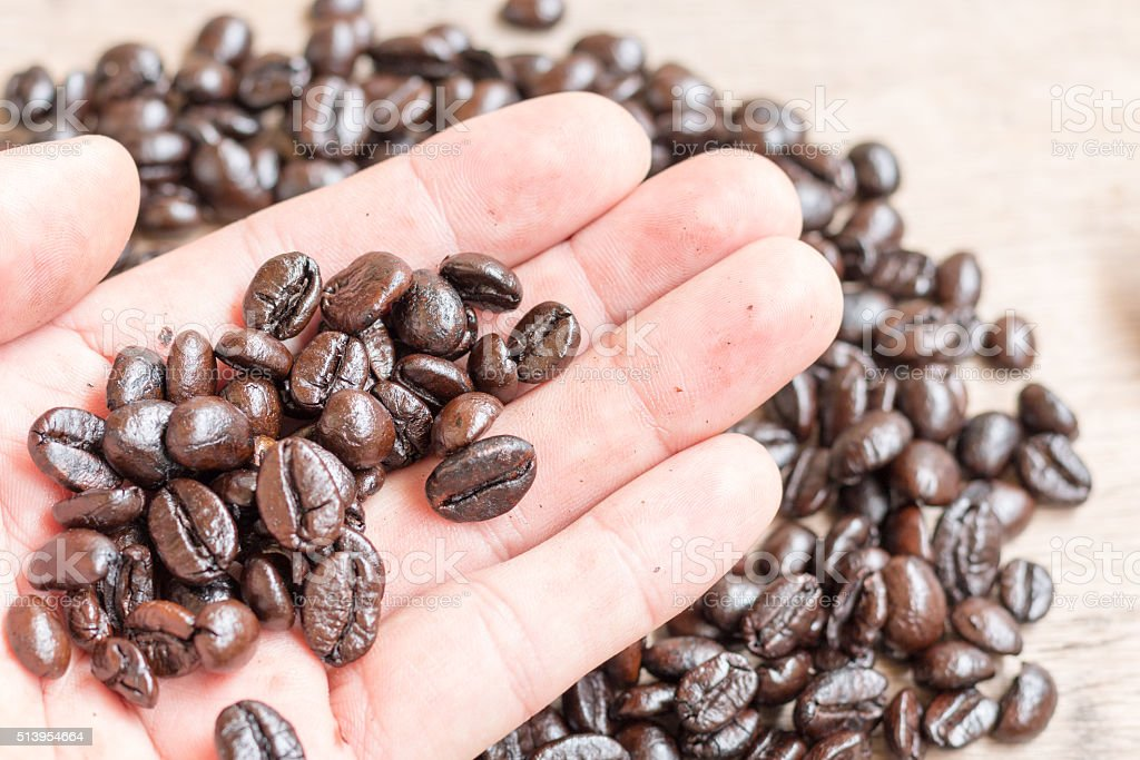Roasted coffee beans on male hand stock photo