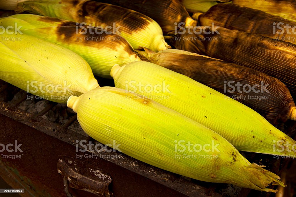 Roasted corn on the grill ,close up stock photo