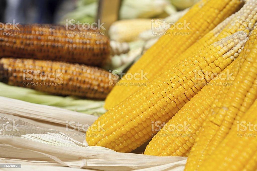 Roasted corn stock photo