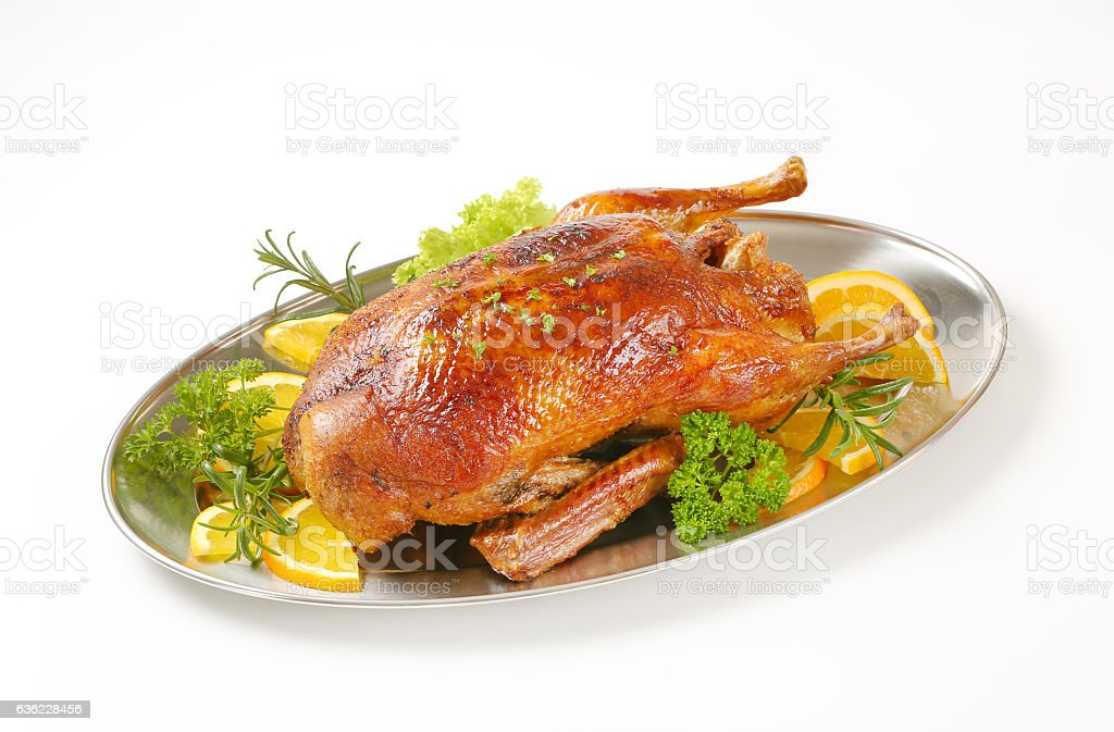 Roasted duck stock photo