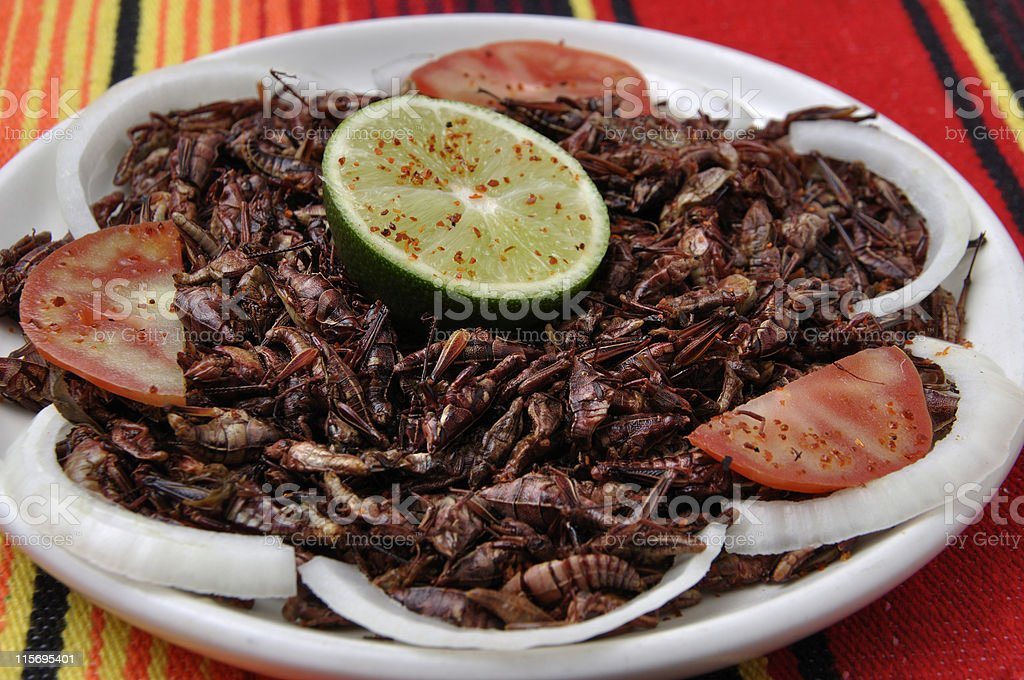 Roasted grasshoppers 'chapulines' stock photo
