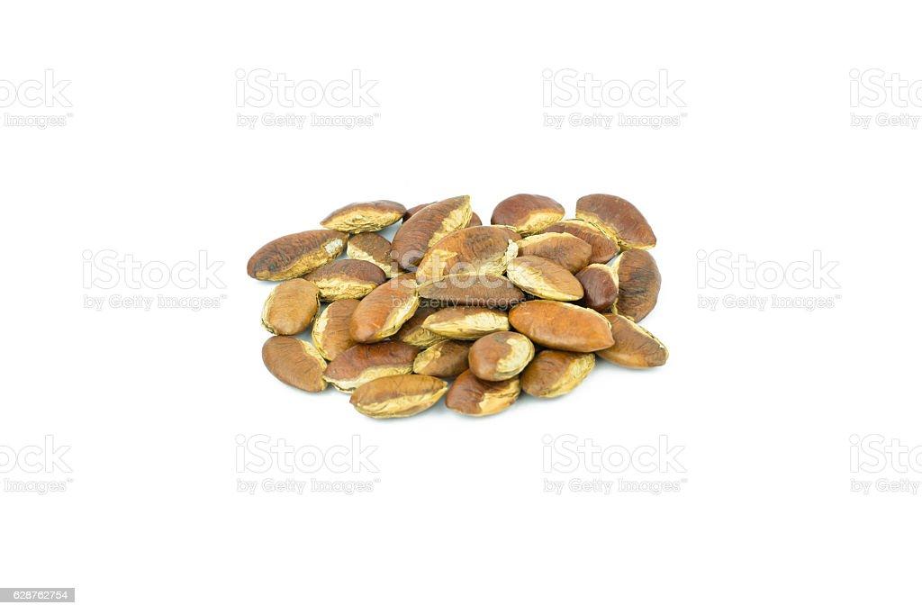 Roasted kayu seeds on white background (Irvingia malayana benn) stock photo