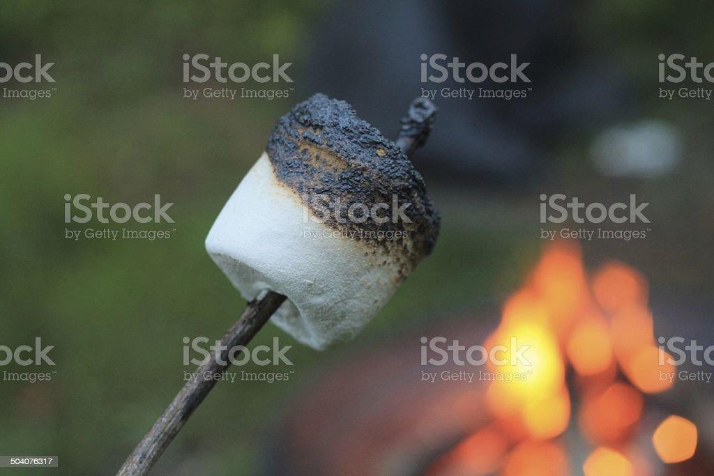 Roasted Marshmallow stock photo