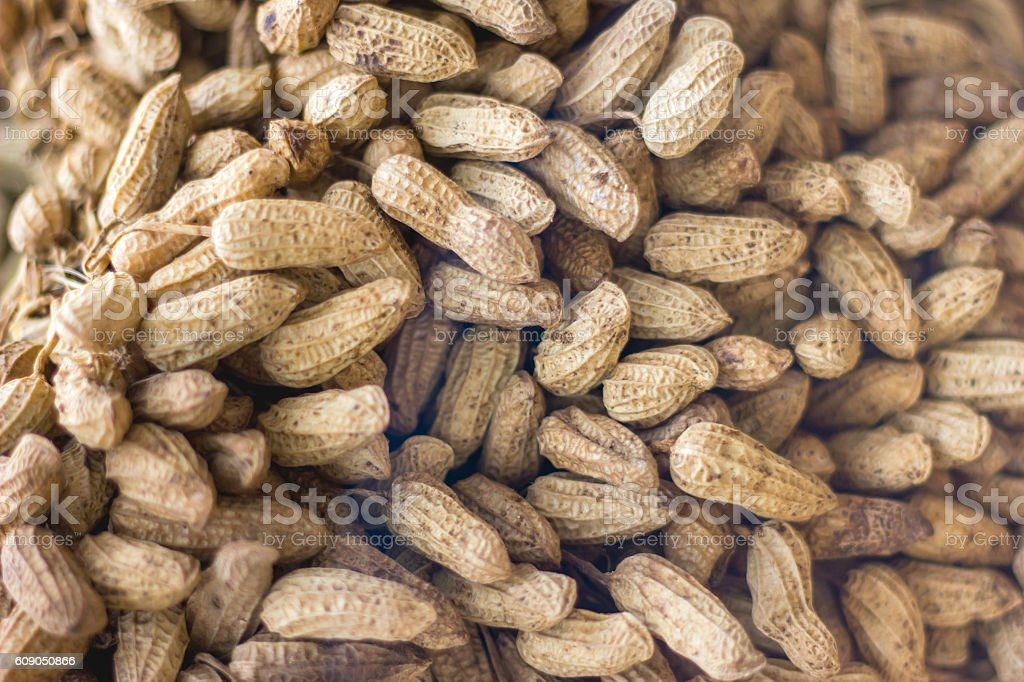 Roasted peanut stock photo