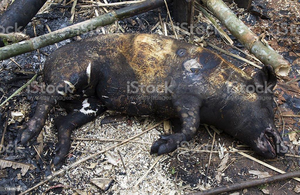 Roasted pig royalty-free stock photo