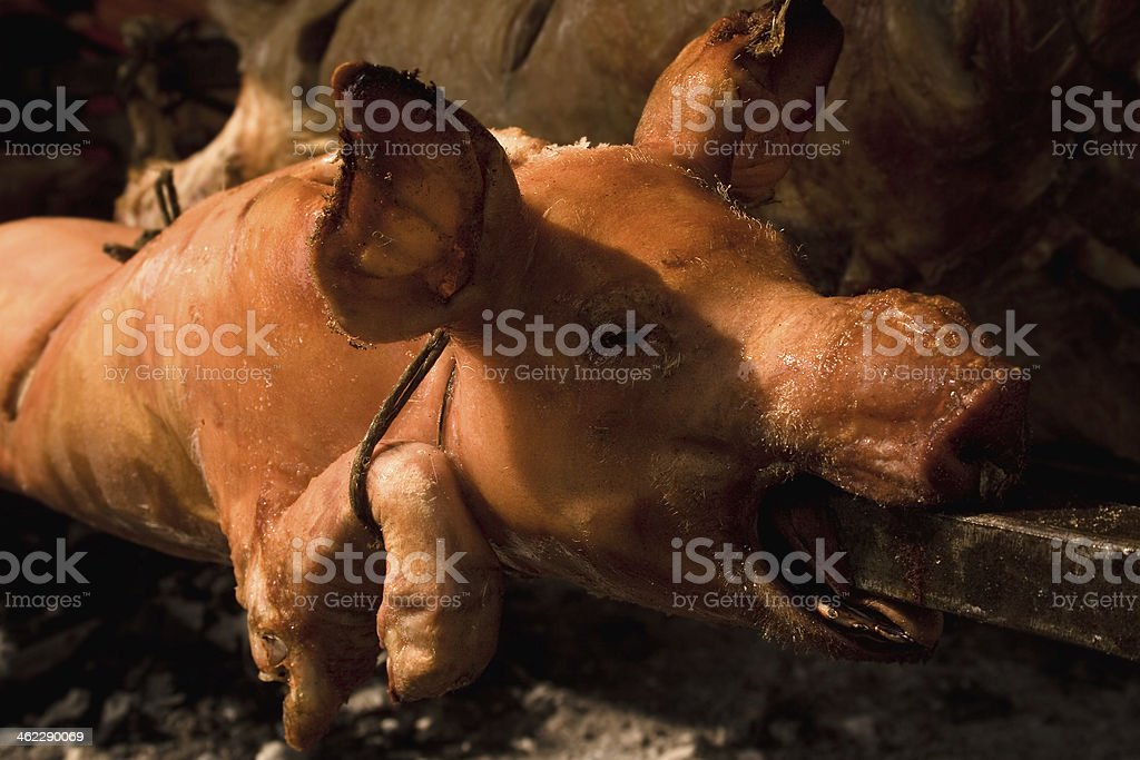 Roasted Pig royalty-free stock photo