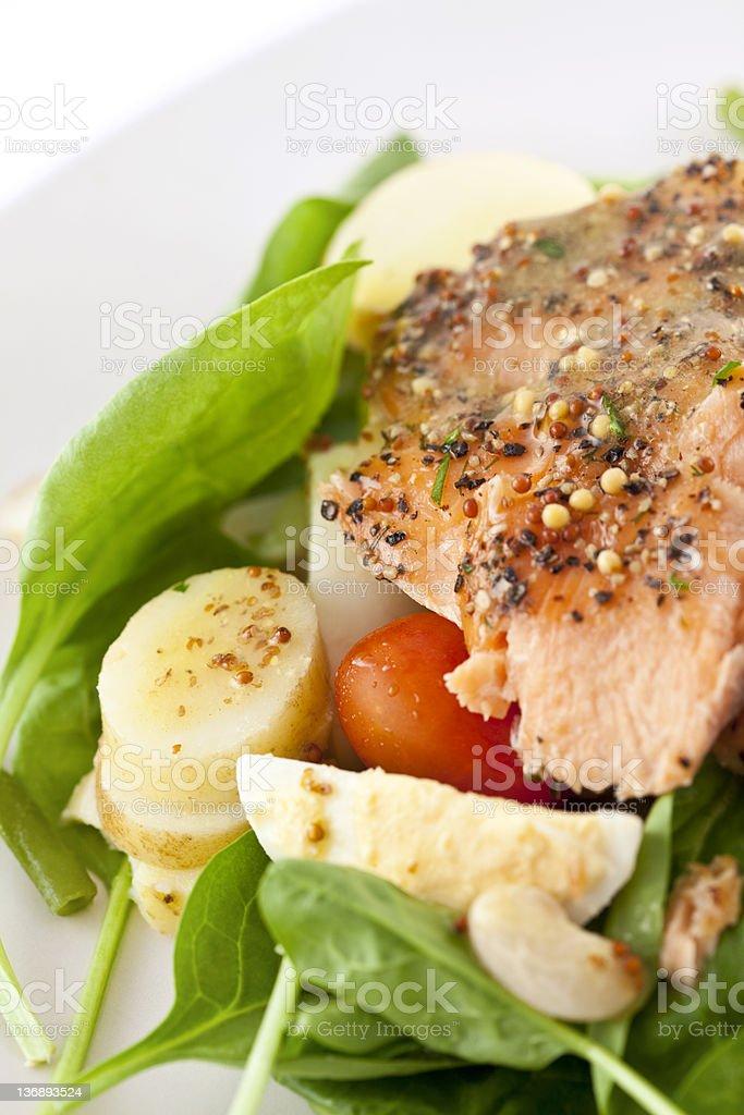 Roasted Salmon Salad royalty-free stock photo