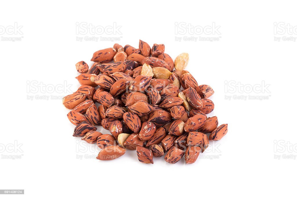 roasted tiger peanuts on white background stock photo