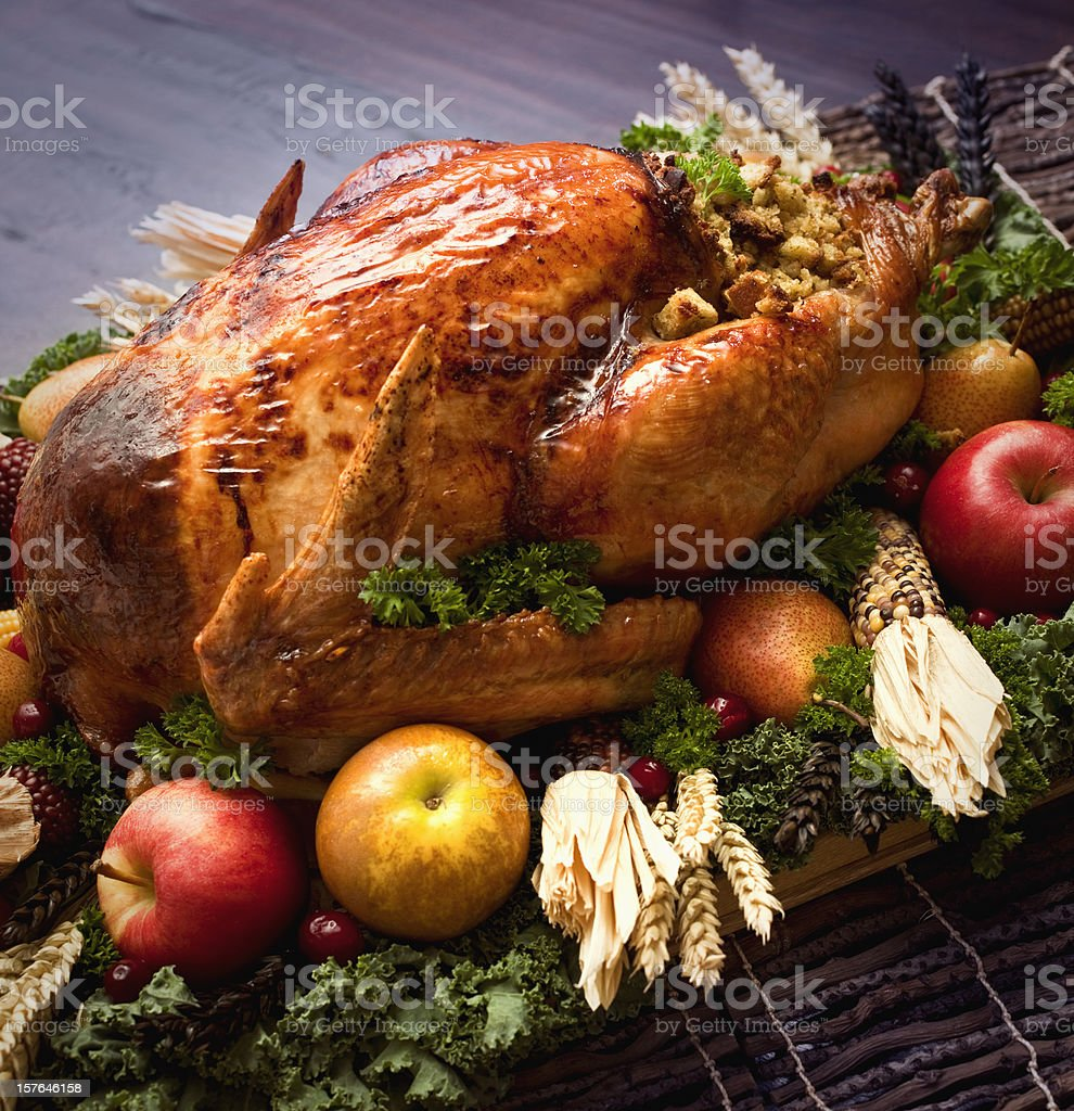 Roasted Turkey on a Plate with Fruits royalty-free stock photo