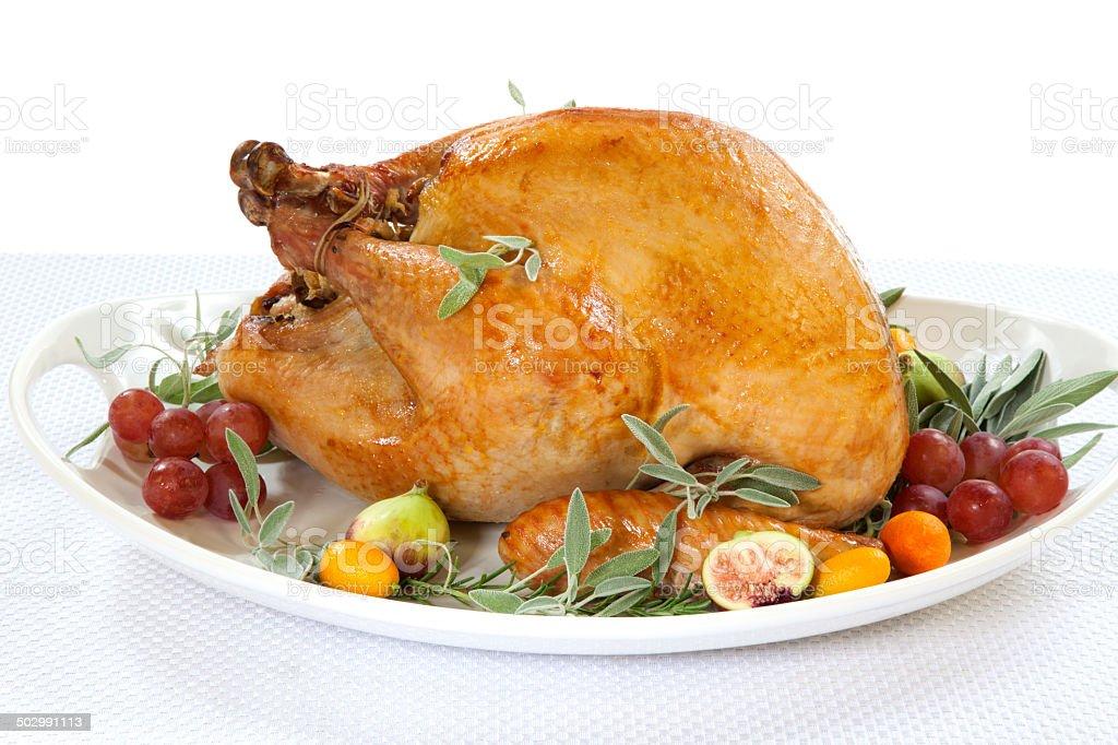 Roasted Turkey on tray over white stock photo