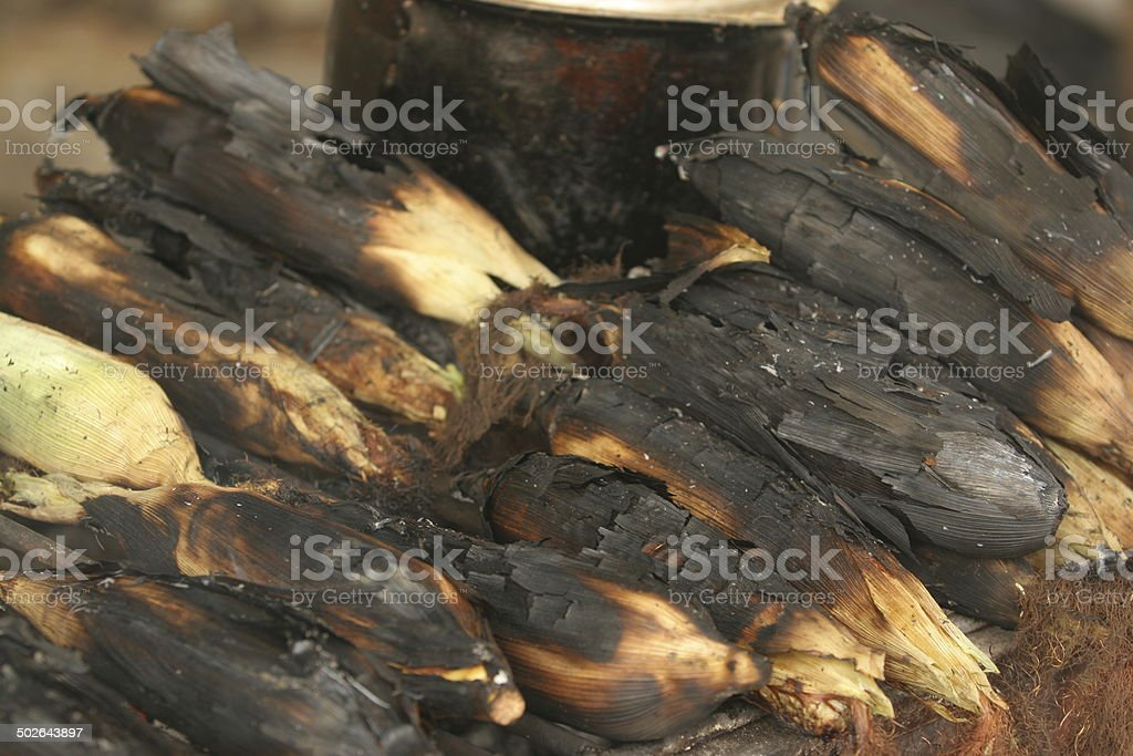 Roasting Corn stock photo
