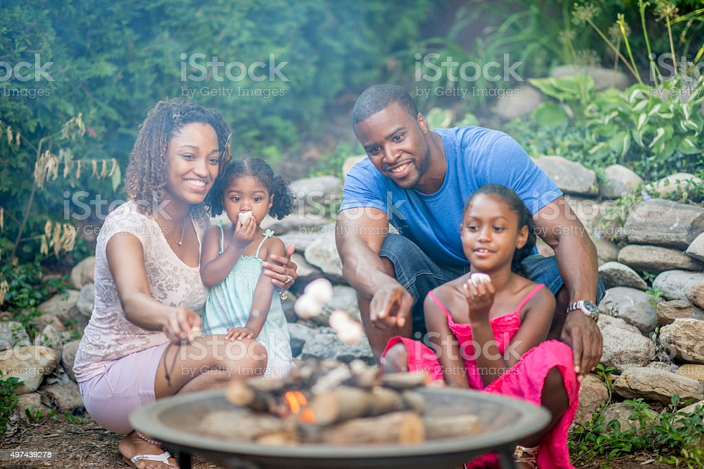 Roasting Marshmallows in the Backyard stock photo