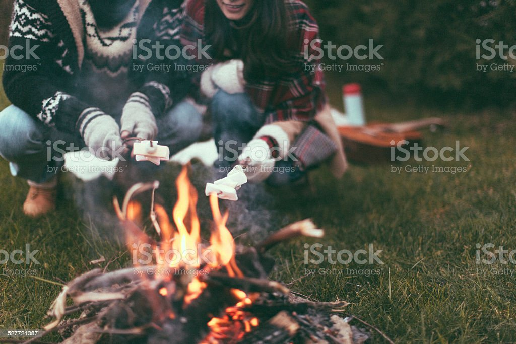 Roasting Marshmallows stock photo