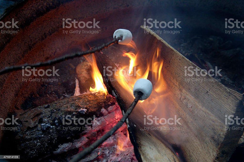 Roasting Marshmellows on a campfire royalty-free stock photo