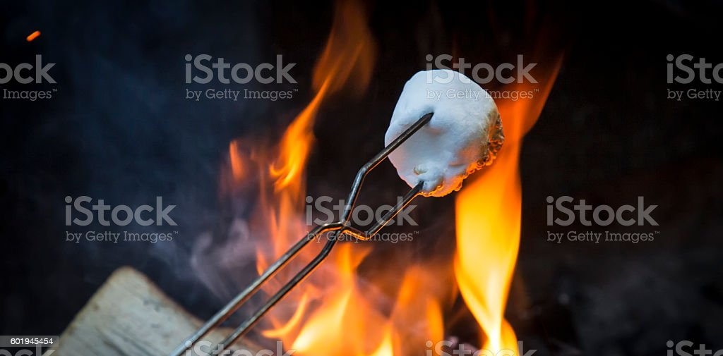 Roasting Marshmellows over the Camp Fire stock photo
