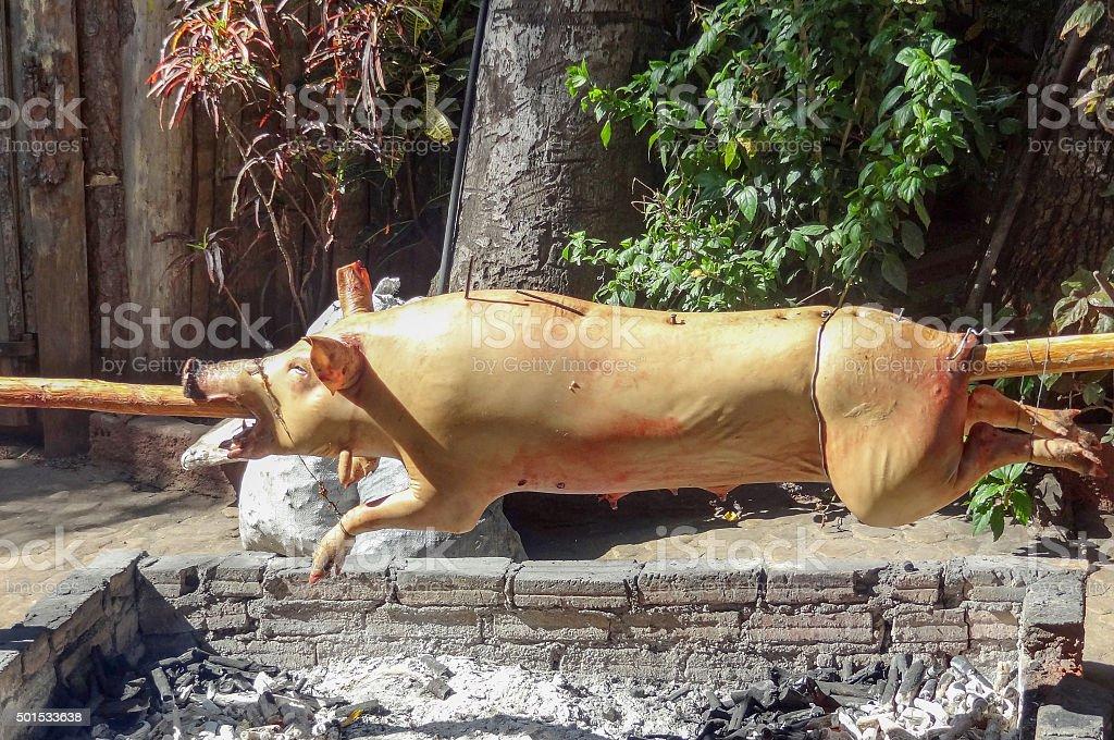 roasting suckling pig stock photo