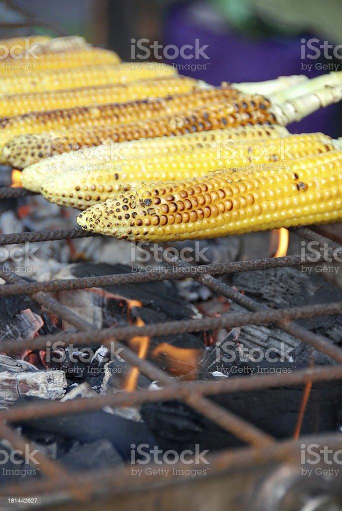 Roasting sweet corn royalty-free stock photo
