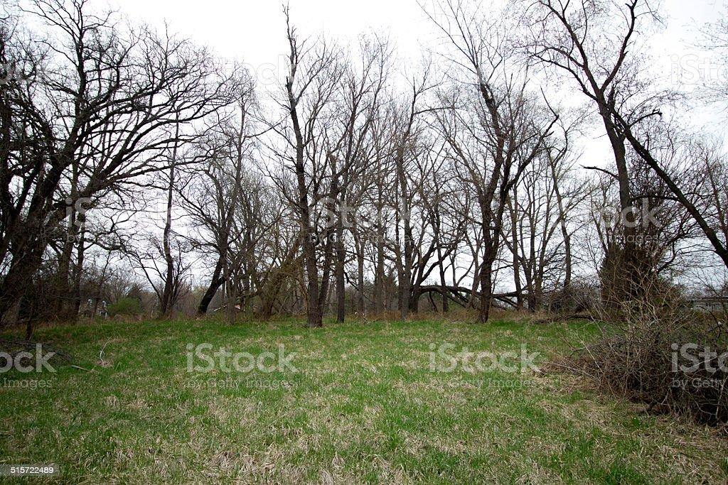 robbie ln yard stock photo
