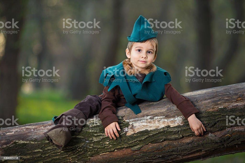 Robin Hood stock photo