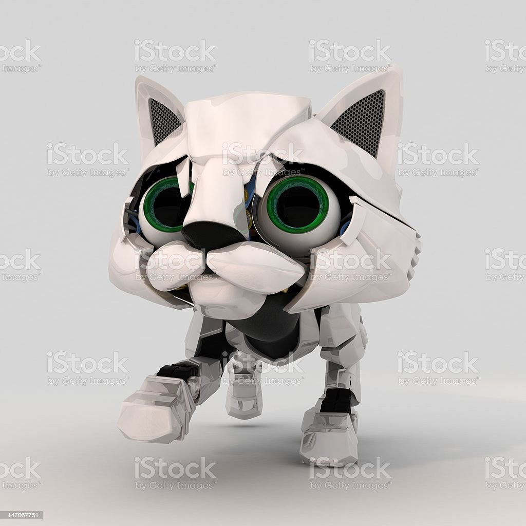 Robot Kitten, Front royalty-free stock photo