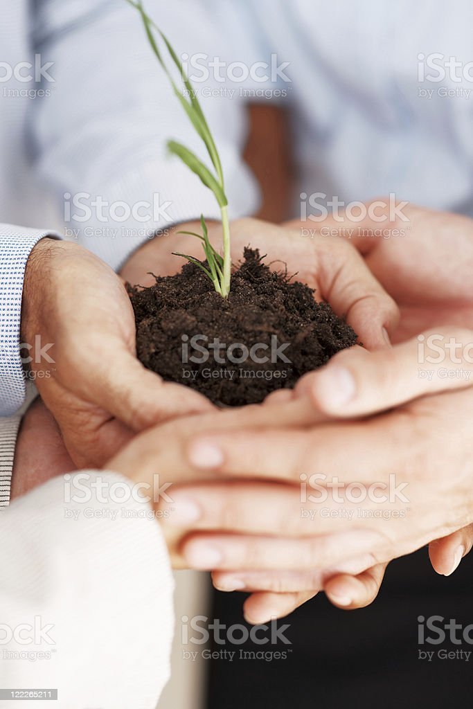 Robust business growth - Businesspeople holding a young plant royalty-free stock photo