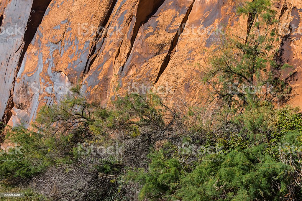 Rock and cliffs covered by desert varnish (US Highway 279) stock photo